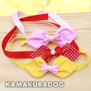 【犬の服】ドットチョーカー|kamakuradog