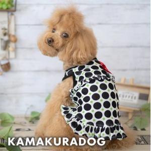 【犬の服】ライム水玉ワンピース kamakuradog