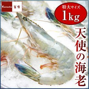 小分け 5尾入 天使の海老 天使のエビ 天使のえび えび エビ 海老 刺身 冷凍 1パック|kamasho