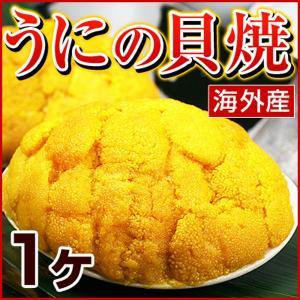 ウニの貝焼き うにの貝焼き うに ウニ むらさきうに ムラサキウニ 貝焼き 貝焼 貝殻を含まず約50g 海外産 福島県 いわき 郷土料理|kamasho