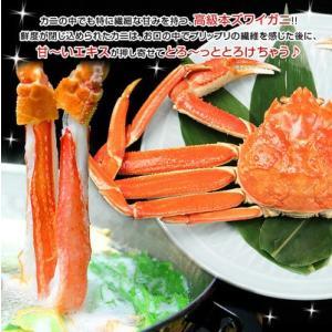 カニ 特大 6Lサイズ かにしゃぶ カニしゃぶ 蟹しゃぶ 蟹 ポーション ズワイガニ しゃぶしゃぶ 特大カニしゃぶ 総重量500g(内容量400g)|kamasho|17