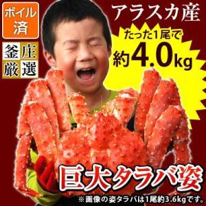 タラバガニ 姿 超特大 ボイル たらば蟹 アラスカ産たらばがに姿(1尾約4.0kg)かに カニ 蟹 タラバ たらば タラバ蟹(味噌抜き処理済)|kamasho