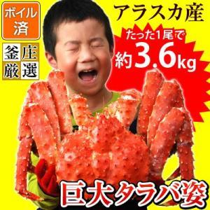 タラバガニ 姿 特大 ボイル たらば蟹 アラスカ産たらばがに姿(1尾約3.6kg)かに カニ 蟹 タラバ たらば タラバ蟹(味噌抜き処理済)|kamasho