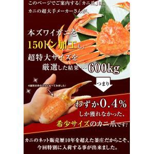 カニ 特大 ズワイガニ 爪 ポーション 生冷凍 ずわい蟹 しゃぶしゃぶ用 7Lサイズ ずわいがに爪 かにしゃぶ 内容量 1kg|kamasho|02