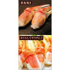 カニ 特大 ズワイガニ 爪 ポーション 生冷凍 ずわい蟹 しゃぶしゃぶ用 7Lサイズ ずわいがに爪 かにしゃぶ 内容量 1kg|kamasho|06