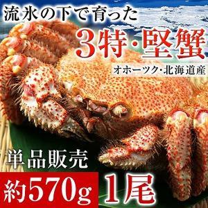 毛ガニ 北海道産 毛蟹 オホーツク産 毛がに 姿 ボイル冷凍 大サイズ約570gを1尾|kamasho