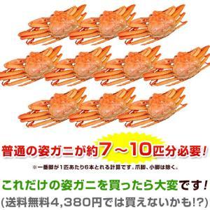 セール カニ 紅ズワイガニ 足 紅ずわい蟹 紅ずわいがに ベニズワイガニ 脚 かに 蟹 ボイル 冷凍 スリット(切れ目)入り 1kg 関節が折れやすくなっております|kamasho|08
