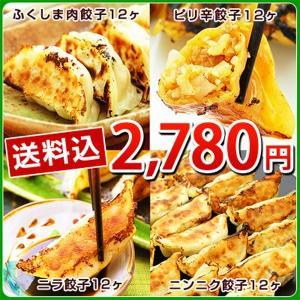 ふくしまギョーザ4種セット(肉餃子12ヶ、ピリ辛ぎょうざ12ヶ、ニンニクギョウザ12ヶ、ニラ餃子12ヶ)|kamasho