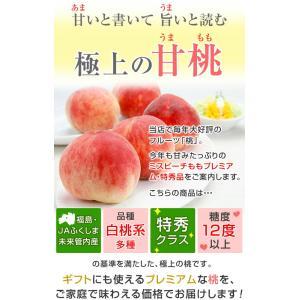 桃 ギフト フルーツ もも 福島の桃 (特秀品 1.8kg 6から7玉入) 1箱 お盆明け 8月下旬発送 白桃系品種 kamasho 05