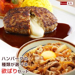 牛丼 ハンバーグ 温めるだけ デミ・和風・チーズから選べる ベストの美味しいハンバーグ & 日東ベスト の牛丼DX 各10個 冷凍 欲ばりセット|kamasho