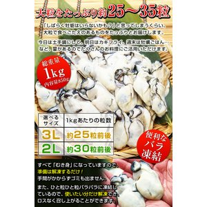3Lまたは2L 選べる 牡蠣 大粒 カキ 国産 特大 冷凍牡蠣 剥き身 加熱用 広島県産 剥きカキ (総重量 1kg 内容量 850g )|kamasho|03
