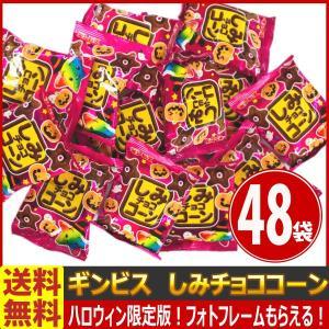 【送料無料】【あすつく対応】ギンビス ハロウィン限定パッケージ☆しみチョココーン  1袋(20g)×48袋|kamejiro