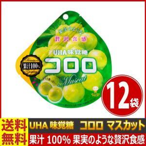送料無料 UHA味覚糖 コロロ マスカット 1袋(48g)×12袋【 お菓子 駄菓子 】|kamejiro