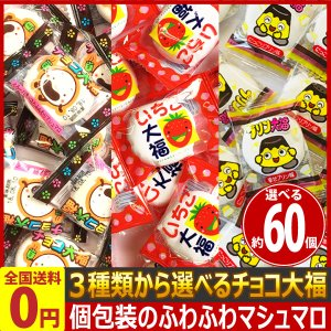 選べる!まとめ買い!チョコ大福・いちご大福・ましゅろ〜 プリン味 合計64個 ゆうパケット便 メール便 送料無料|kamejiro