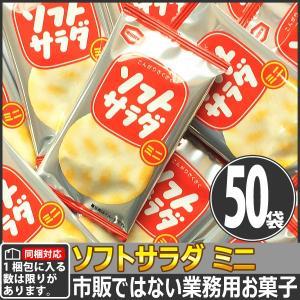 【同梱専用】亀田製菓 市販にはない業務用! ソフトサラダ ミニ 1袋 2.6g(1枚)×50袋|kamenosuke