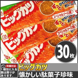 【同梱専用】すぐる ずっと変わらないおいしさ!ビッグカツ 30枚|kamenosuke