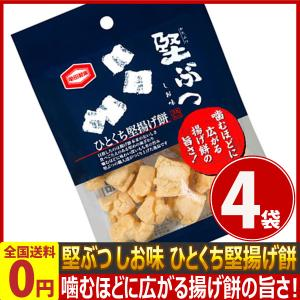 亀田製菓 堅ぶつ しお味 1袋(48g)×4袋 ゆうパケット便 メール便 送料無料|kamenosuke