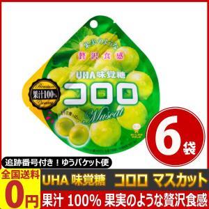 UHA味覚糖 コロロ マスカット 1袋(48g)×6袋 ゆうパケット便 メール便 送料無料|kamenosuke