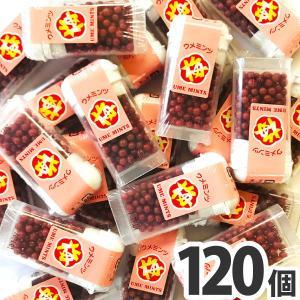送料無料 オリオン バラまき!つかみ取りの買い増しに! 梅ミンツ 1個(8g)×120個(業務用 大量 バラまき つかみどり 駄菓子 お菓子 販促品 クリスマス 景品)|kamenosuke