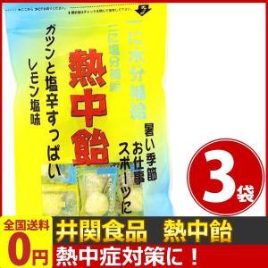 井関食品 一に水分補給!二に塩分補給!「熱中飴」レモン塩味 1袋(100g)(個装紙込み)×3袋 ゆうパケット便 メール便 送料無料|kamenosuke