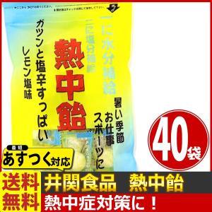 送料無料 井関食品 一に水分補給!二に塩分補給!「熱中飴」レモン塩味 1袋(100g)(個装紙込み)×40袋 あすつく対応|kamenosuke