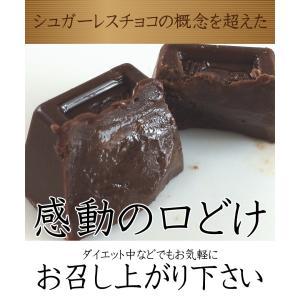 蒜山 魔法の口どけヘルシーチョコレート 約200g (個別包装込み) ゆうパケット便 メール便 送料無料 kamenosuke 06
