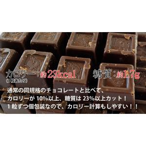 蒜山 魔法の口どけヘルシーチョコレート 約200g (個別包装込み) ゆうパケット便 メール便 送料無料 kamenosuke 08