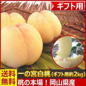送料無料 産地直送! 桃の名産地 岡山県産 一ノ宮白桃 ギフト用約2kg(目安:約6玉入)(7月下旬頃から出荷)|kamenosuke