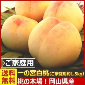 送料無料 産地直送!桃の名産地 岡山県産 一の宮白桃 ご家庭用 (ご家庭用 約1.5kg)(目安:約6玉〜8玉入) (7月下旬頃から出荷)|kamenosuke
