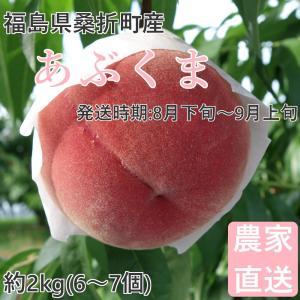品種  :あぶくま 親の品種「ゆうぞら」の高品質を十分に引継いだ、溶質な果肉の桃。 内容量 :約2k...