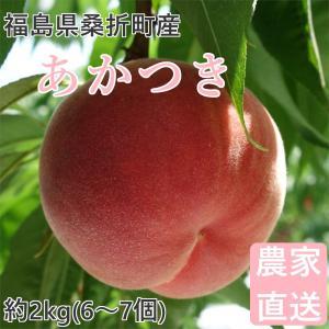 品種  :あかつき 福島の桃を代表する品種で、日本で最も多く栽培されている桃です。 内容量 :約2k...