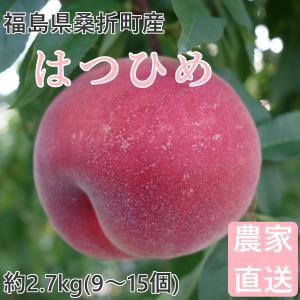 品種  :はつひめ 福島県でのみ生産が限定された品種。柔らかめ。 内容量 :約2.7kg(10〜15...