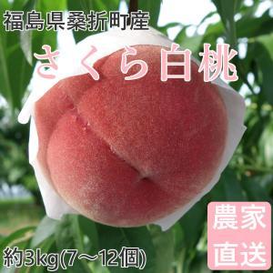 品種  :さくら白桃 高糖度で特大になる桃。とても硬め。 内容量 :約3kg(7〜10個) ※個数に...