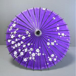 舞踊傘 踊り傘 紙傘 紙舞傘 番傘 歌舞伎 日本舞踊 踊り 小道具 舞傘 和傘 お稽古用 紫 梅 kz|kameya