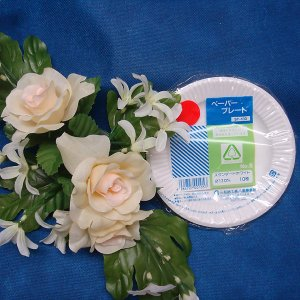 レジャー用 紙皿ホワイト5号13cm(10枚)|kami-plaza