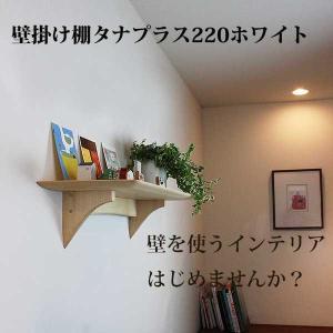 壁掛け棚 タナプラス220ホワイト 石膏ボードOK ウォールシェルフ  おしゃれ  モダン神棚にも|kamidana56