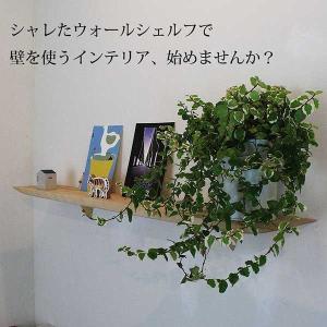 ウォールシェルフ 壁掛け棚/モダン神棚70ホワイト 木製 壁棚 ピンで固定|kamidana56