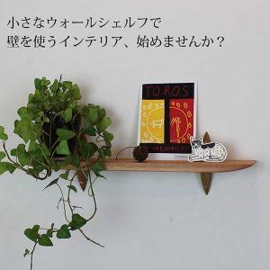ウォールシェルフ おしゃれな壁棚 石膏ボード壁専用40クルミ ピンで固定 コンパクト|kamidana56