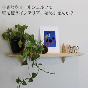 トイレインテリア おしゃれな壁棚 石膏ボード壁専用40ホワイト ピンで固定 コンパクト|kamidana56