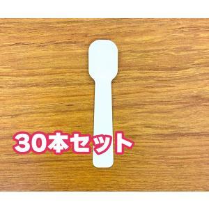 紙スプーン 個包装 30本 25m m×110mm 日本製 使い捨て kamihiro-rakuraku