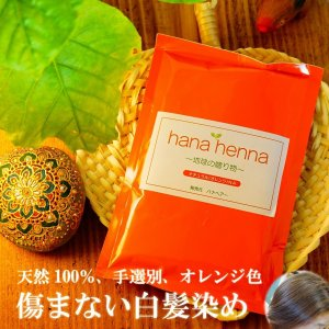 ヘナ ハナヘナ hana henna ヘナナチュラル 100g 5個セット 白髪染め オレンジ kaminoya-kanno