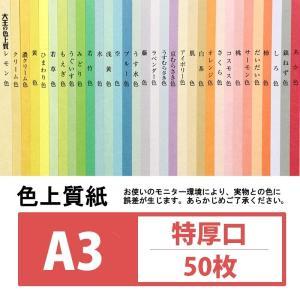 (コピー用紙) 色上質紙 特厚口 A3 50枚入り
