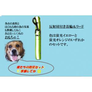 防災グッズ 防災セット 非常用持ち出し袋 ペット用非常持出袋 送料無料|kamisugiya|05
