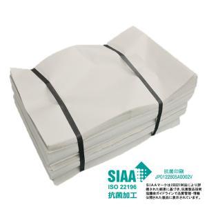 新聞紙 新品の新聞紙 無地新聞紙 梱包材 緩衝材 詰め物 更紙 床材 巣材 10kg 抗菌タイプ
