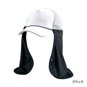 品番 :AC-069Q  カラー:ブラック(48053 8)       ライトグレー(48054 ...