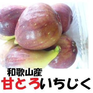 いちじく 和歌山産 2.4kg ジャム作り イチジク いちじく 無花果 完熟 1パック300g前後×...