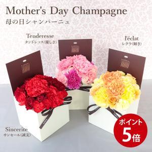 母の日 ギフト 2021 送料無料 フロレアル Mother'sDAY シャンパーニュ 母の日ギフト フラワーボックス 赤 ピンク 他3色選択 カーネーション プレゼント 花|kamon-hanay