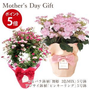 母の日ギフト 2021 送料無料 フラアート花門  デンドロビウム 花鉢 「ハマナレイク・クミ」 アジサイ 鉢植え 「ピンキーリング」 母の日 プレゼント 花 フラワー|kamon-hanay