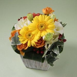 花 ギフト 誕生日 フラアート花門 カジュアルアレンジ Sサイズ(4色から選べます!) あす楽 送料無料 フラワーアレンジメント アレンジメントフラワー お花|kamon-hanay