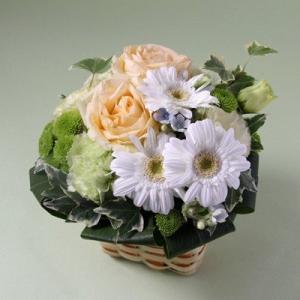 花 ギフト 誕生日 フラアート花門 カジュアルアレンジ Mサイズ(4色から選べます!) あす楽 送料無料 フラワーアレンジメント アレンジメントフラワー お花|kamon-hanay
